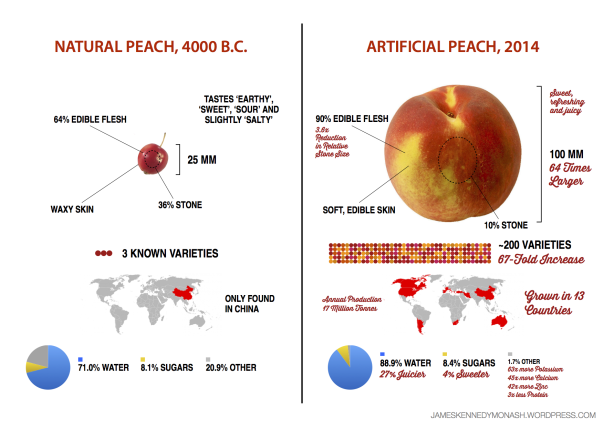 artificial-natural-peach2
